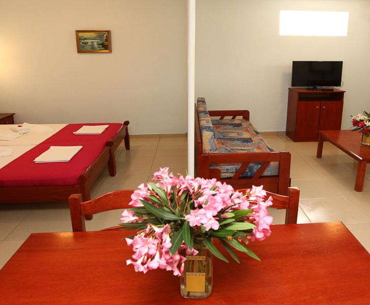 Double studio room - apartment
