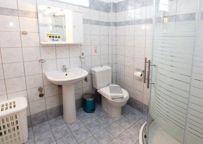 Standard's apartment bathroom